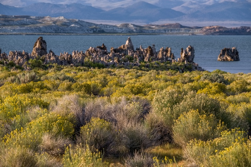 LEE VINING MONO LAKE TUFA
